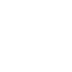 Service wordpress